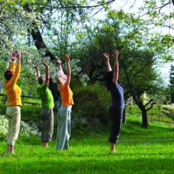SMDM-mai-Yoga-Jardin-250x250